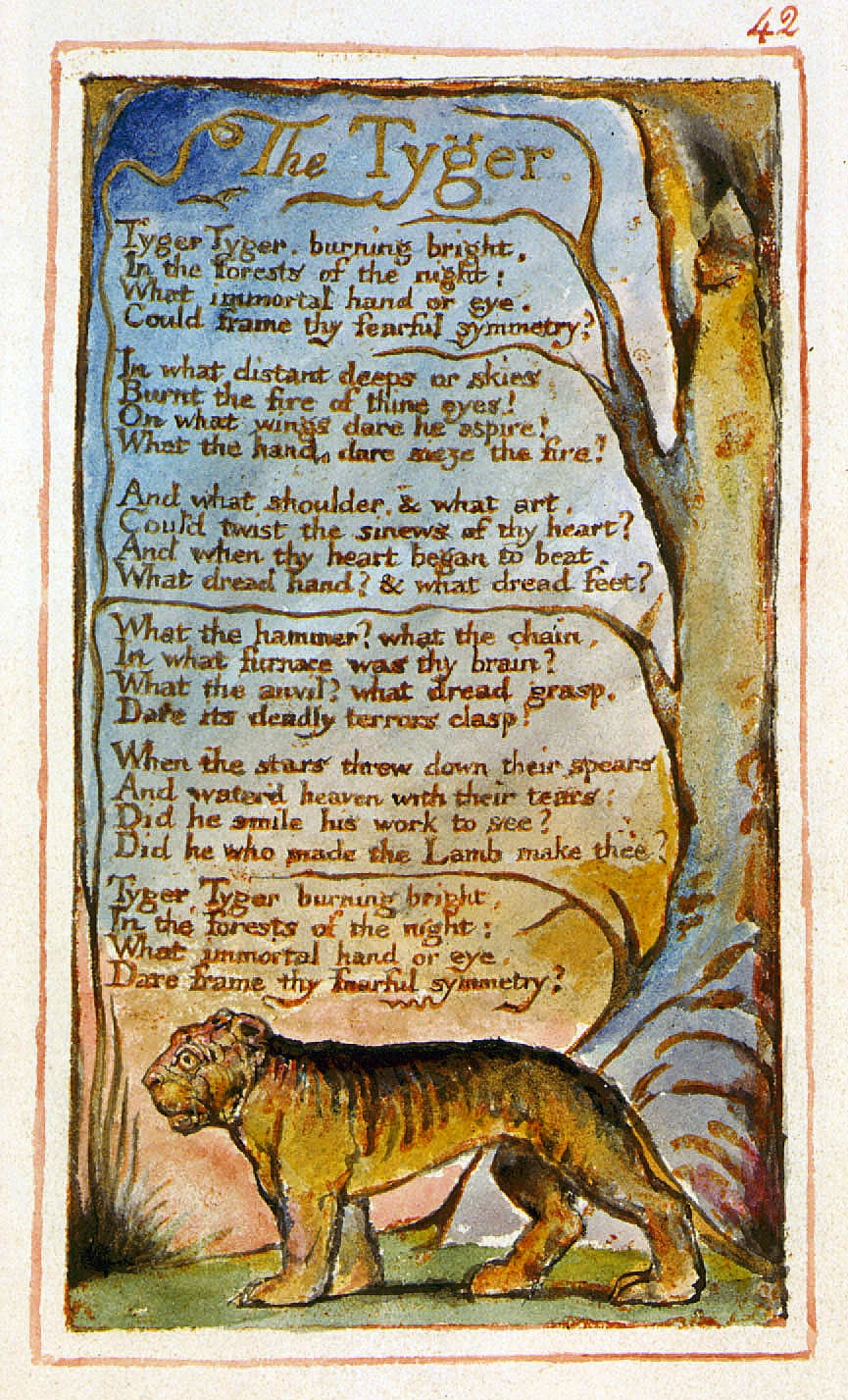 reflections on william blakes the lamb Songs of innocence and of experience study guide contains a biography of william blake, literature essays, a complete e-text, quiz questions songs of innocence and of experience summary and analysis of the little black boy the lamb songs of innocence: the little black boy.